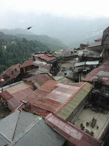 The roofs of Shimla India-Gregg