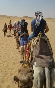 team-on-camels-back-view