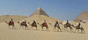 team-on-camels
